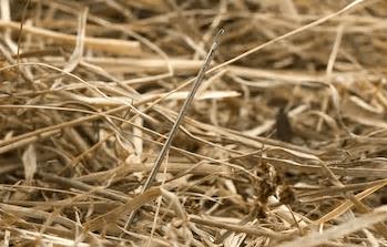 Massendatenanalyse – wie Wirtschaftsprüfer die Nadel im Heuhaufen finden (Teil 1)
